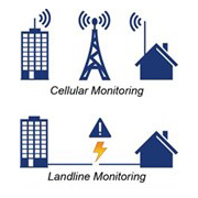 cellular monitoring